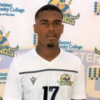 Jason Almedia Da Cruz, Westchester Soccer